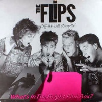 The Flips  ‎– What's In The Bright Pink Box?